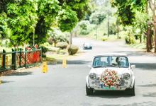 Mini Cooper by Baybayan Bridal Cars