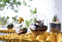 Terrarium Love by POPfolio