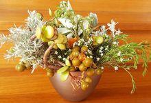Special occasion  by Alegria Malya