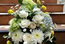 Hydraroze collection by Zamia Florist