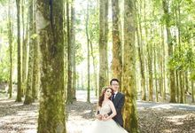 I PROMISE BY YOSEPH AND LILIAN by INDIGOSIX PHOTOWORKS