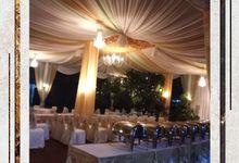 Otiga's by Otiga Tent Decoration