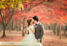 Enchanting Korea in Autumn by WhiteLink