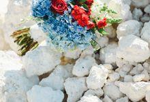 Triin & Torin Elopment Wedding by Foraday Dream