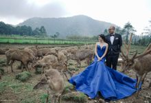 DENDY  &  SHERA by AB Photographs