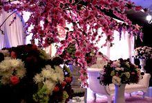 Sakura Est Enfin Arrive by Suri Malai Ali