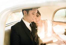 Ivy and Franz by The Daydreamer Studios