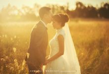 Vineyard pre-wedding in Australia by Armadale Weddings