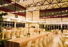 Lightings & Colours by FlowerRiot Events SG