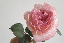 Project Flower by biancoflowerjkt