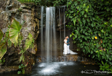 Signature Masterpiece by KC PHOTOWORKS