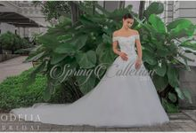 Odelia bridal brand new collection by Odelia Bridal