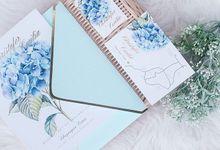 Love Starts Here by Hummingbird Studio