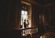 Daydream by Villa Mosconi Bertani