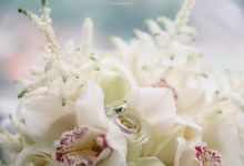 THE WEDDING OF TIM & GIZELLA by AB Photographs