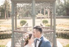 Streets of HK by Cang Ai Wedding