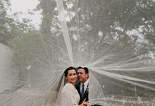 Candie x Quini Wedding Highlights by Dauntless Blissful Creatives