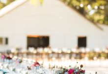 Autumn Vineyard Wedding by Marilyn Ambra Party Consultants
