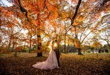 Maple Tree season in Autumn by The Wedding & Co