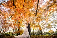 [TOKYO] Maple Tree season in Autumn by The Wedding & Co