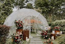 The Summerhouse Dome Surprise Proposal in Classic Red and Cappuccino Floral Rustic Theme by Lily & Co.