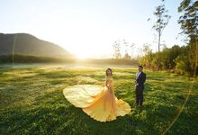 Pre wedding Photoshoot by Rosegold