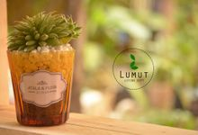 Exclusive Wedding Favors by LUMUT_Living Gift