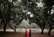 Solemnization & Matrimony: Darren & Jane by Jessielyee.