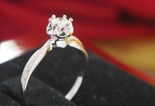 Engagement Rings by Karatvan