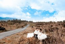 Johan & Sentia by JJ Bride