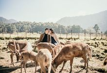 Thomas and Fanny Prewedding by Sevendays Pictures
