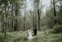 Ben & Samantha The Woods by Pixioo Photography
