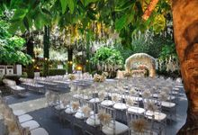 The Enchanted Forest by Flora Lines Decoration