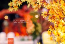 BOY+SHARON | Autumn Wedding by Braunberrie Timeless Portraiture