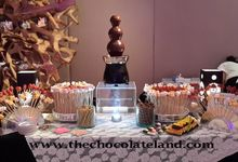 CHOCOLATE FOUNTAIN by The Chocolate Land