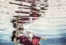 Underwater Prew by JimieWu Photography