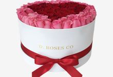 D Roses Co by D. Roses Co