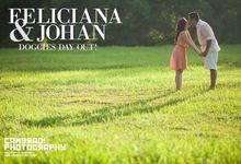 Feliciana & Johan - Doggies day out! by Camerad! Photography