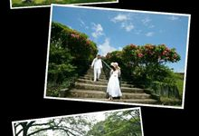 Our Clients Prenup and Postnup by 18 Timeless Weddings and Events