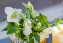 Royal Blue & Silver Wedding by Flora Botanica Designs