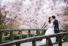 Cherry Blossom Pre Wedding Japan by Synchronal Photography