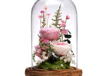 Preserved Flower Glass Dome by BloomBack