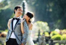 Prewedding by art light picture