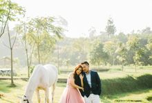 TEASER - FELIX & MARISA by Fusia Pictures