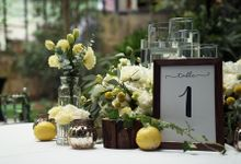 Gorgeous Outdoor Wedding by Spring Cottage