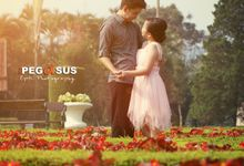 Tini & Teja Wedding Story by The Pegasus Epic Photography