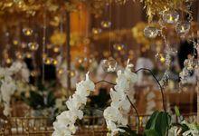 Elegant White and Gold by STEVE'S DECOR