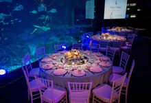 Under The Sea by The Wedding Atelier