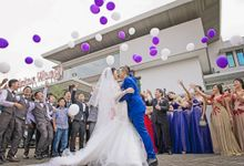 Elvind - Mel Wedding by e_studios