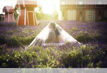 PHOTO EDITING & DESIGN by Cavaleda Album